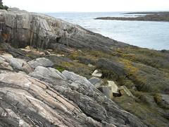 land's end (l . e . o) Tags: coast maine rocky atlantic landsend kelp baileyisland