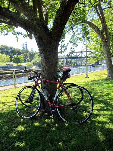 Ballard Locks: our bikes
