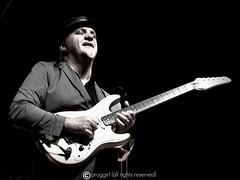 Frank Gambale (proggirl) Tags: band jazz blues fusion fest guitarist progressive virtuoso soullive frankgambale