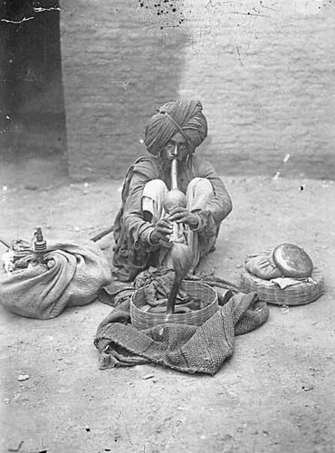 Snake charmer with cobra, India