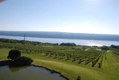 Lake Seneca from Chateau Lafayette Reneau Winery by Jeff French Segall