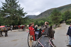 Jaunting cars for going up to Gap of Dunloe (Marcus Meissner) Tags: cars marcus gap irland killarney 2010 dunloe studiosus meissner jaunting