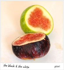 the black & the white (gicol) Tags: fruit race sweet dolce variety racism douce figs integration dulce figo higo diversidad fico raza variedad fruto figue frutto freshcut razzismo fichi frut razza integrazione ficuscarica cultivar diversit variet diverity diversit
