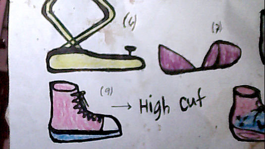 shoedesign1