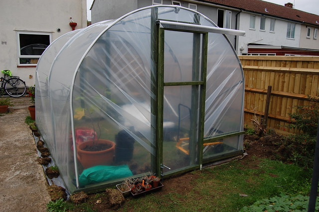 The back of the polytunnel