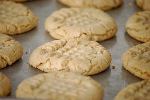 Peanut butter cookies from Meg Wolfe's simple recipe ebook