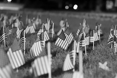 0492 (ckampfe) Tags: college night 50mm us memorial bokeh united politics 911 11 flags september states 50 eleven foreground gustavus adolphus