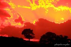 Sunset in Sardinia (yokopakumayoko) Tags: sardegna sunset italia rosso colori rosu nuoro tramontidisardegna sunsetinsardinia theoriginalgoldseal mem7672 splendiditramonti puestadesolencerdeña tramontiinbarbagia