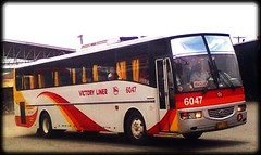 Victory Liner 6047 (marKuneho3505 optd. by rabbit.explorer) Tags: nissan diesel victory santarosa ud liner 6047 vli ja450ssn exfoh pf6a