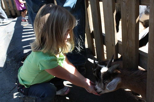 Catie feeding the goats