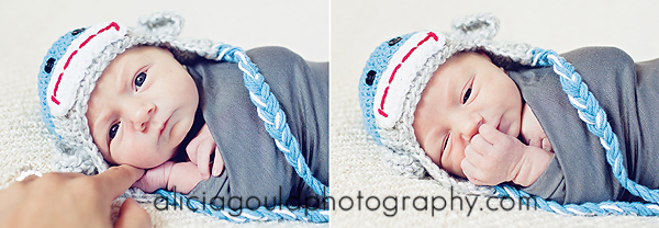 5009636261 b16c9981ab o So You Booked a Newborn Photography Session. Now What?