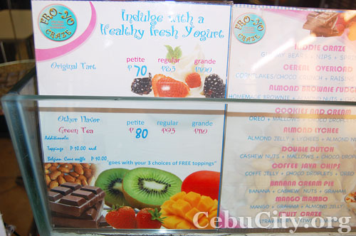 Fro-Yo Craze Cebu City