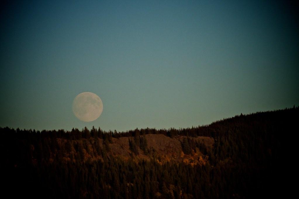 Moonrise 333/365