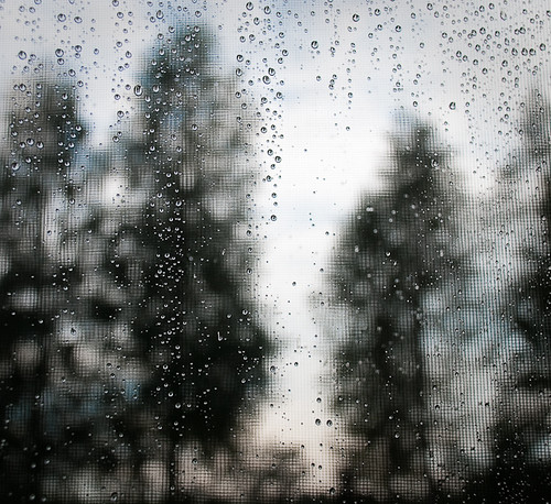 cottage rain