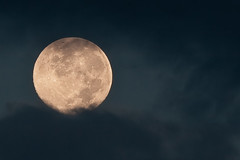 [フリー画像] 自然・風景, 月, 夜空, 201010171900