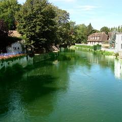 L'Eure  Pacy-sur-Eure (Michele*mp) Tags: france green river europe vert rivire normandie normandy eure rives hautenormandie pacysureure valledeleure michelemp fleursetpaysages