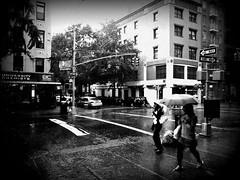 i got the rainy day tuesday blues (Manhattan Girl) Tags: street nyc people bw rain manhattan umbrellas fauxholga holgish onewaysignsx2