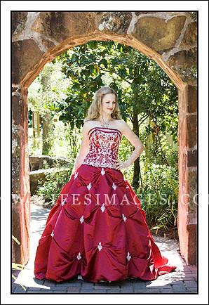 bridals - love that dress!
