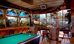 Just a regular bar! (Curious Expeditions) Tags: animals wisconsin bar forest stuffed pub midwest funny naturalhistory taxidermy hayward scenes diorama anthropomorphize