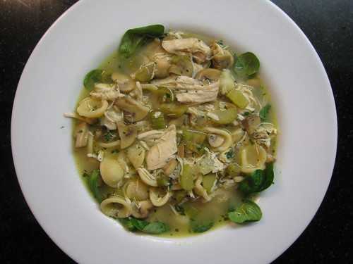 chicken and mushroom soup with orecchiette