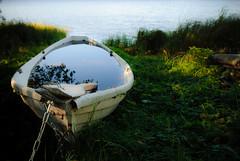 Non-Seaworthy (Markku Heikkil Photography) Tags: lake finland boats boat transport lakes transportation rowboat rowboats rowingboat rowingboats watertransport gettyimagesfinlandq1