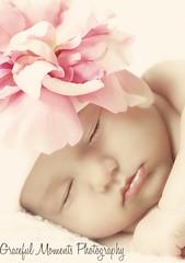 Vintage Baby (Melissa--Ann) Tags: newborn newbornportraits newbornphotographer