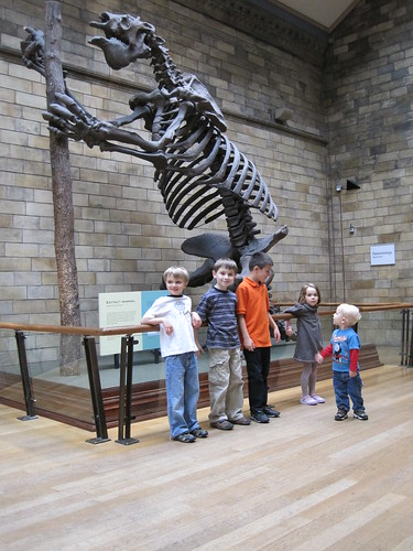The Natural History Museum and the Big Guy