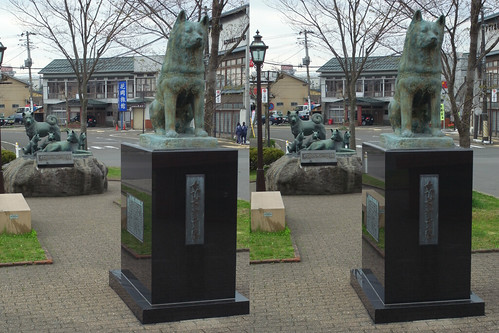 Statue of Hachiko at Odate station, stereo parallel view