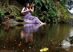 The song of mother nature [Explorer] (Anderson Sutherland) Tags: tree nature water forest photo interesting long exposure day image song explorer mother bank son pregnant lorenzo stockphotos me strobe violins sons stradivarius grvida strobist cactusv2