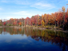 Blue Bayou (rkramer62) Tags: autumn colors clouds reflections bluesky bluebayou grandrapidsmichigan calvincollege naturepath bunkerinterpretivecenter rkramer62
