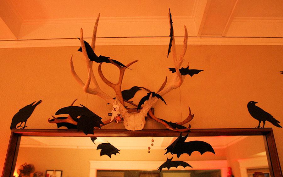 Bats and ravens.