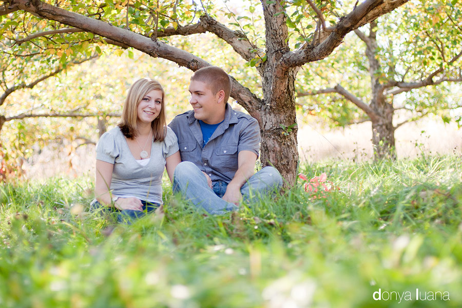 Engaged couple sit under apple tree in southern Twin Cities Metro area orchard for portraits