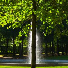 Atomizer (fotomanni.de) Tags: tree fountain hidden franken baum hofgarten ansbach fontäne verdeckt bej