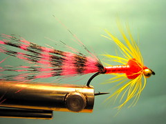Rob's Zebra Chinook Salmon Fly