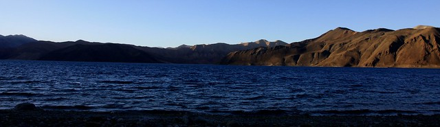 pangong tso lake ladakh