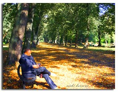 TAKE A SEAT...... (vicki127.) Tags: trees friends green leaves photoshop canon300d greatshot parkbench twop niceweather digitalcameraclub youmademyday alexanderpark cs5 mywinners flickraward concordians october2010 ilovemypics mikederby manchesterthroughmyeyes ringofexcellence vickiburrows