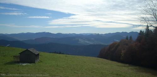 Bucovina  , Molid 2010 (47)