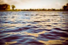 (JuanMphoto) Tags: camera trees house lake man water closeup 35mm gold golden pond nikon exploring explore adobe ripples dslr 18 vignette lightroom cs4 noy d90 intrestingness