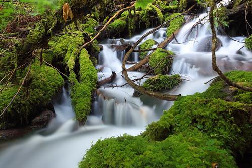 フリー写真素材, 自然・風景, 滝, アメリカ合衆国, オレゴン州,