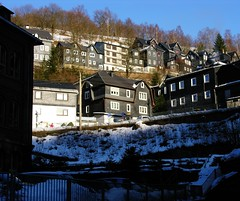 Typical town in the Thuringian Forest (:Linda:) Tags: winter house snow texture germany town shingle thuringia slate baretree schiefer thuringianforest lauscha nackterbaum
