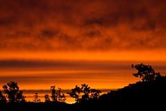 Sunset 16-11-2010 (Paul Hagon) Tags: sunset blackmountain telstratower canberra australiancapitalterritory australia