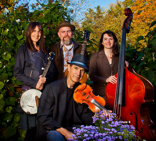 The Hogwire String Band