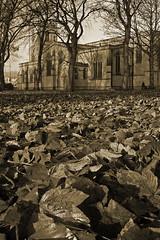 Dewsbury Minster graveyard (Camperman64) Tags: november autumn wet graveyard leaves misty death decay minster gravestones damp dewsbury weaksunlight chrchyard dewsburyminster
