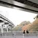 Edogawa Bridge 江戸川橋