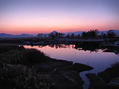 Sunset-Suncheon Bay-South Korea (mikemellinger) Tags: sunset reflection nature water beauty landscape bay scenery southkorea suncheon jeollanamdo suncheonbay gettyimageskoreaq2