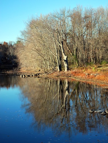 Concord River Reflections