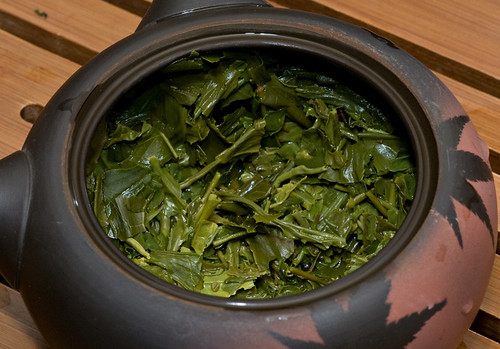 infusing leaves