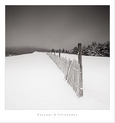 Mother's journey (Pascupixar) Tags: longexposure blackandwhite bw snow blancoynegro canon square landscape mark nieve bn ii 5d hitech snowscape formatt gnd bigstopper