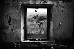 Decaying frame (Effe.Effe) Tags: bw window monochrome ruin bn finestra ruraldecay casolare