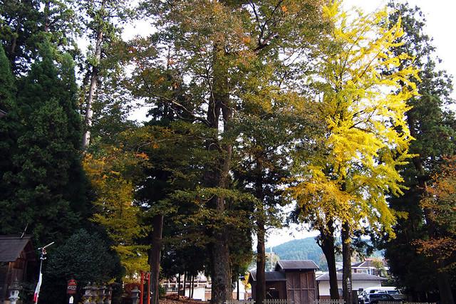 20101119_152132_宇太水分神社